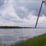 The Rhine Swing